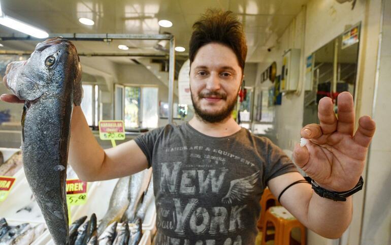 Balık 70 lira kafasındaki taş 600 lira Böbrek taşı düşürdüğüne inanılıyor